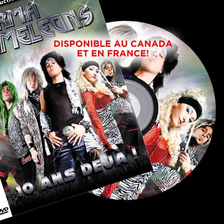dvd-2013